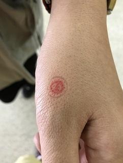 voted-stamp.JPG